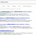 serps devis referencement gouv fr